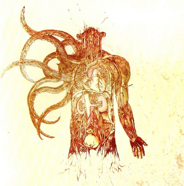 The Anatomy Of By Between The Buried And Me Album Victory Vr297