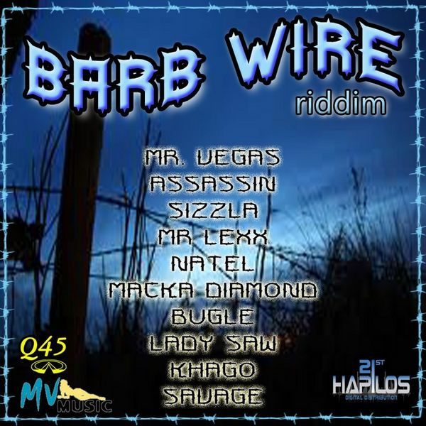 Barb Wire Riddim by Various Artists (Compilation; Q45; 2H 132 ...